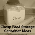 Cheap Food Storage Container Ideas