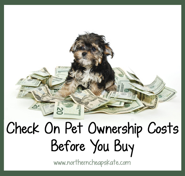 Check On Pet Ownership Costs Before You Buy - Northern Cheapskate