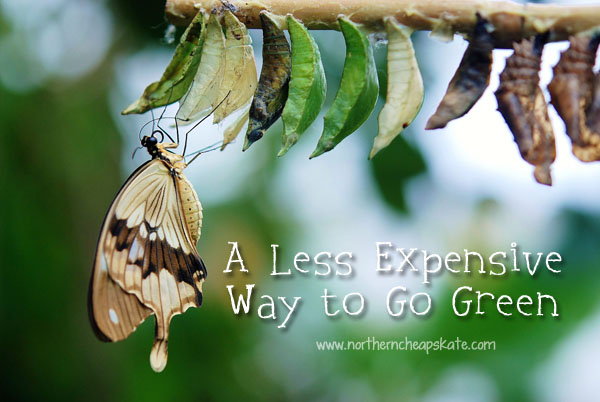 A Less Expensive Way to Go Green