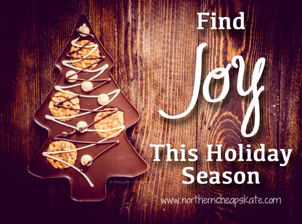 Find Joy This Holiday Season