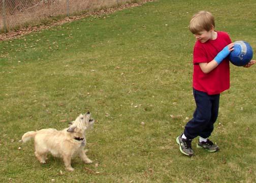 My son and dog have a little backyard fun