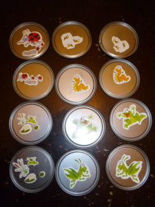 Reuse juice can lids to make a memory game