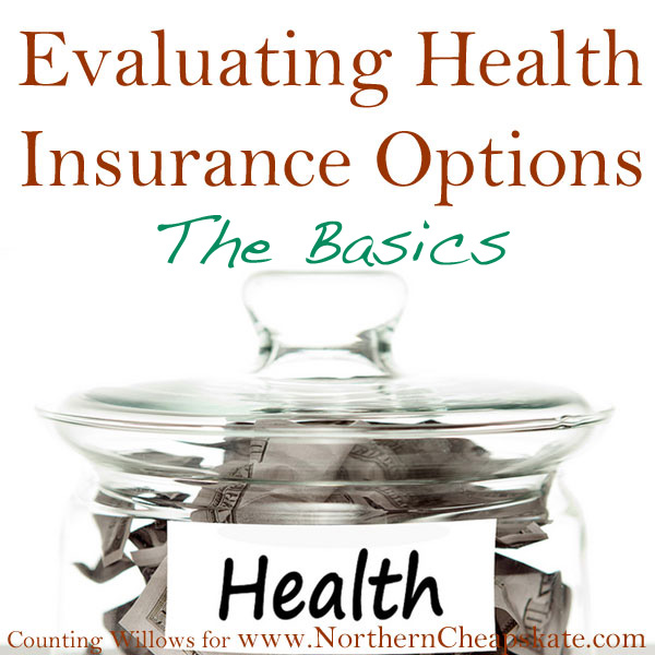 Evaluating Health Insurance Options: The Basics