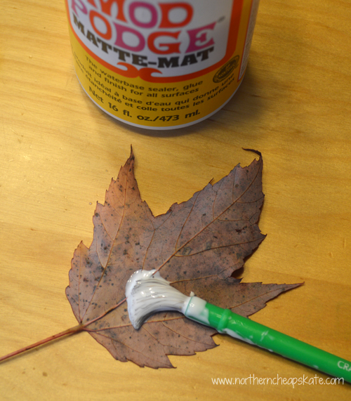 DIY Fall Leaves Wall Art- Prepping the leaves