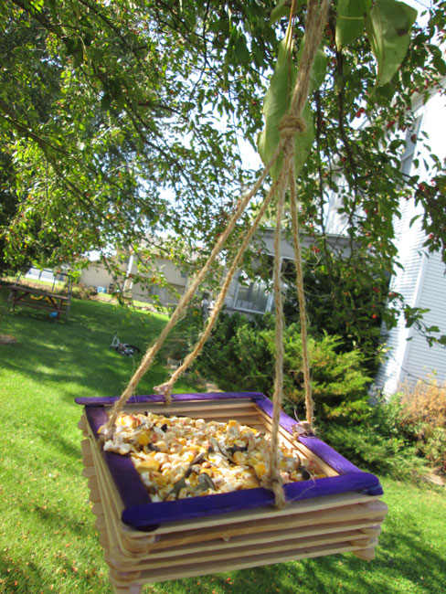 4 Fun and Easy DIY Bird Feeders: Popsicle Stick Bird Feeder