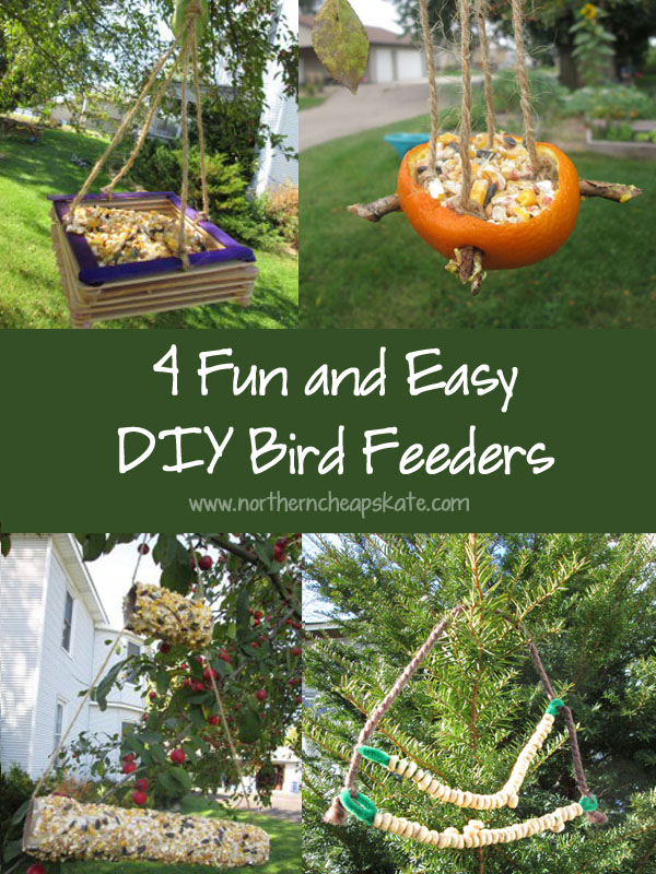 4 Fun and Easy DIY Bird Feeders