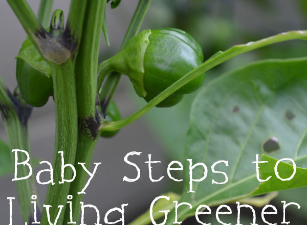 Baby Steps to Living Greener