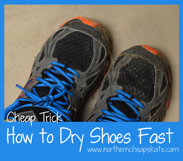 Cheap Trick How to Dry Shoes Fast