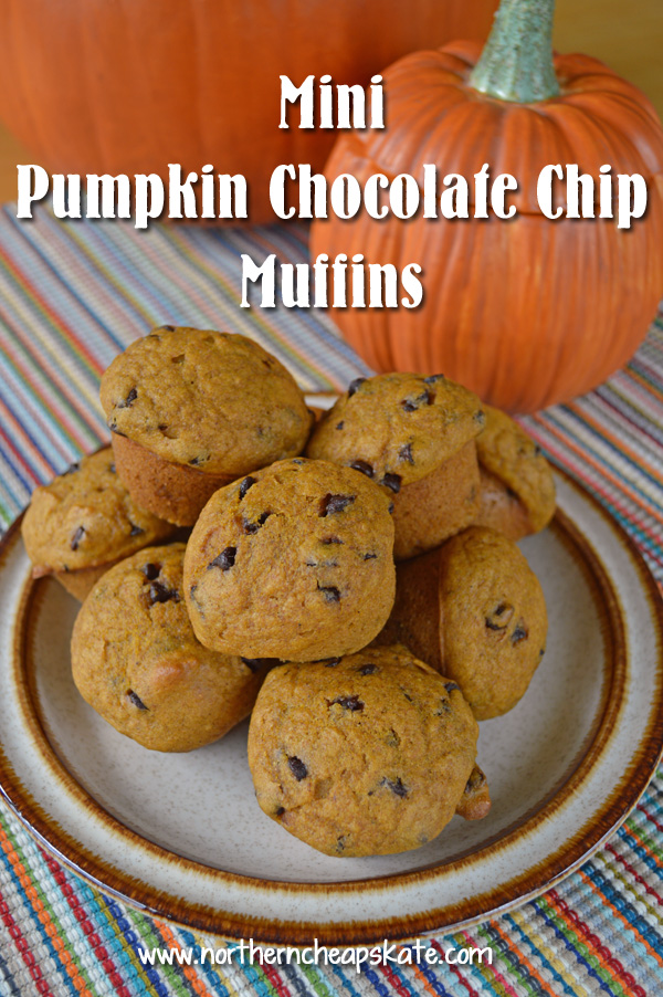 Delicious Mini Pumpkin Chocolate Chip Muffins