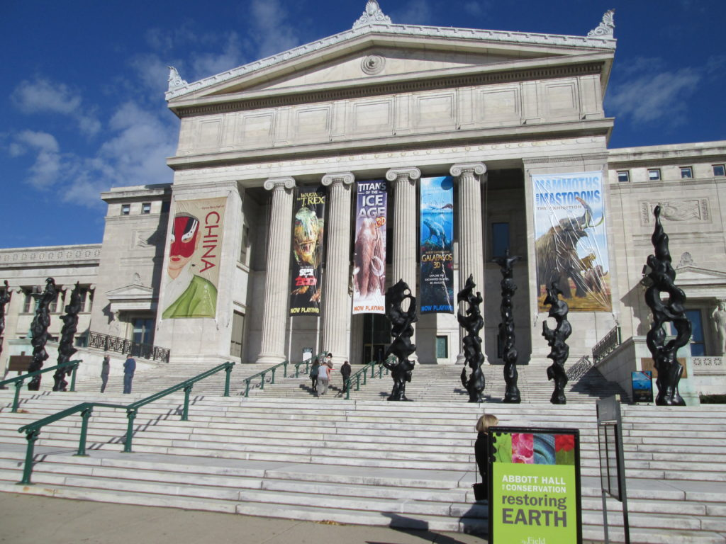 Chicago Weekend on a Budget: Field Museum of Natural History