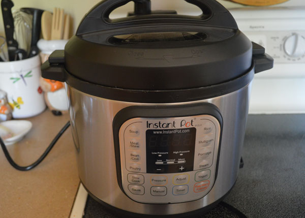 FIve Frugal Things - Instant Pot